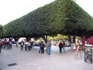 a-square-in-quretaro-mexico